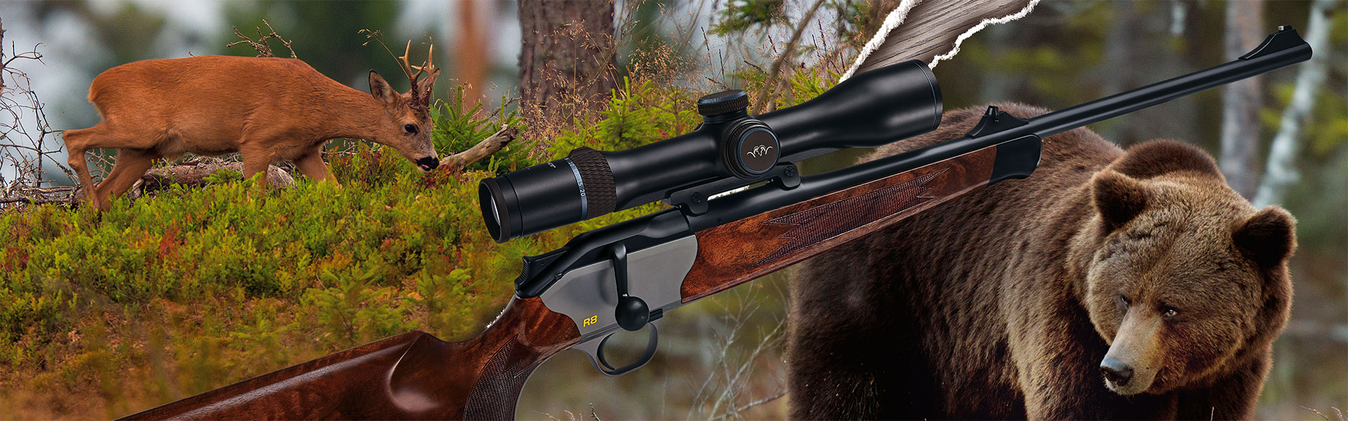 Blaser – Blog – Bucks before bears