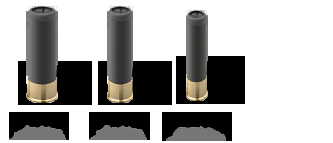 Blaser calibre 12, 20, 28